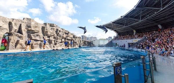 Atschara, Delphinarium in Batumi