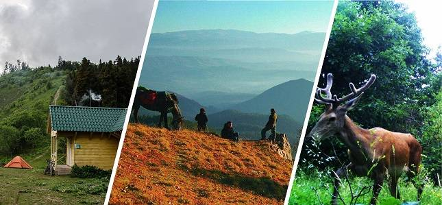 Nationalpark Bordschomi-Charagauli  Nationalparks als Reiseziel