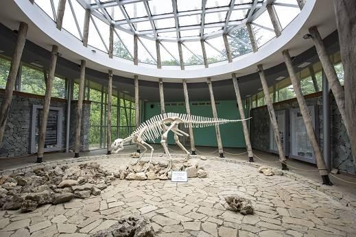 Ausgestellter Dinosaurier in Sataplia, Karsthöhlen in Georgien